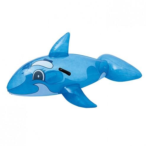 Monture Baleine Transparente